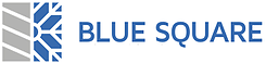 Blue Square Environmental Services